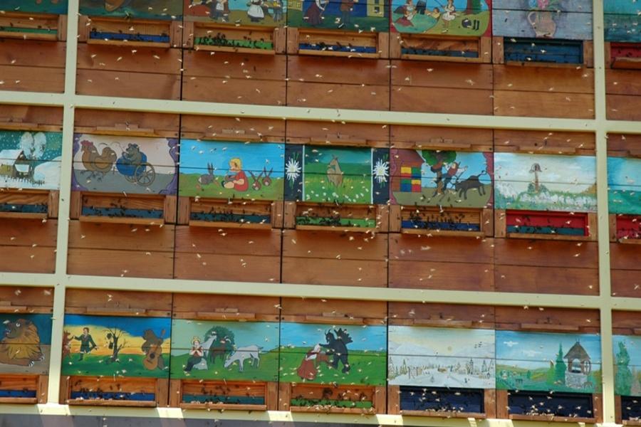 Čebelje bivališče in oprema čebelarja